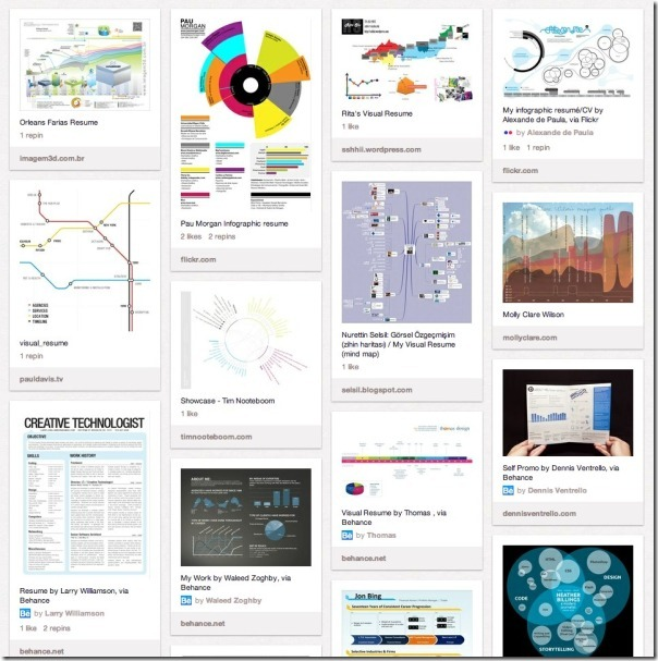 Infographic Visual Resumes
